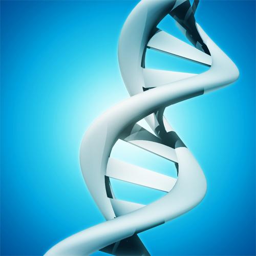 Tuto photoshop cs5, Créer un ADN 3D avec l'outil repoussé de Photoshop cs5