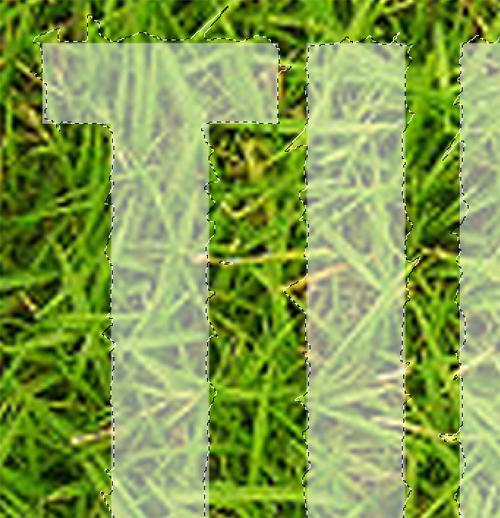 Créer un effet d'herbe spectaculaire sur texte