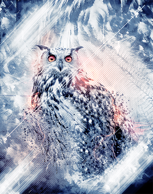 Owls Design V2 avec Photoshop