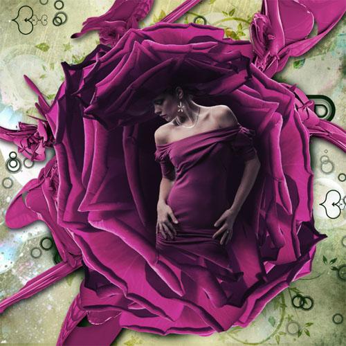 Tuto Photoshop la Douceur de la Rose