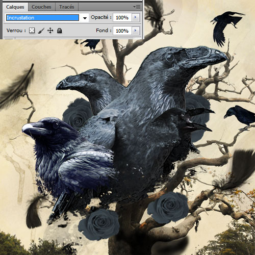 Tuto Montage Photo Raven design