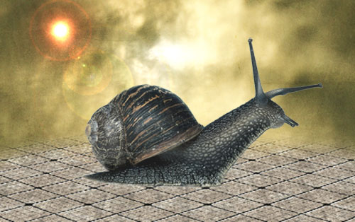 Un escargot métallique avec Photoshop