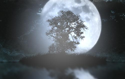 Une nuit magique avec photoshop
