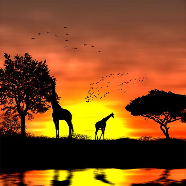 Coucher de soleil africain tuto photoshop les meilleurs - Fond ecran coucher de soleil sur la mer ...
