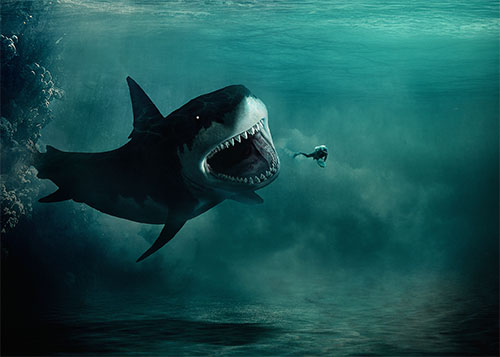 Les Dents De La Mer Avec Photoshop Tuto Photoshop Les
