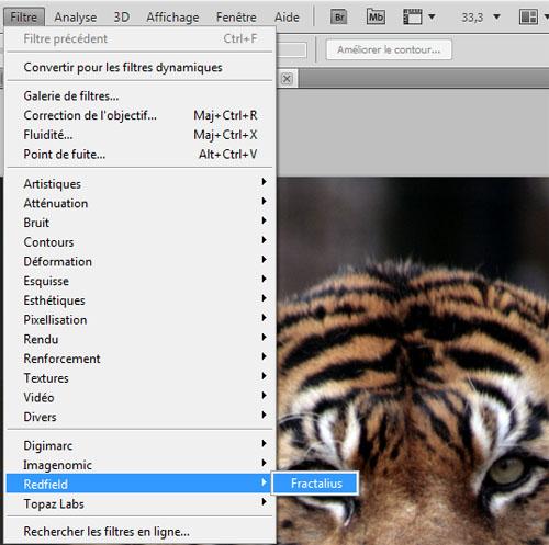 Créer un effet fractalius avec adobe photoshop et le plugins redfield fractalius