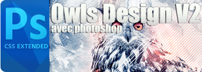Owls design avec photoshop version 2