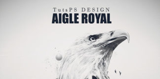 Photomanipulation Aigle Royal
