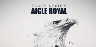 Photomanipulation Aigle Royal